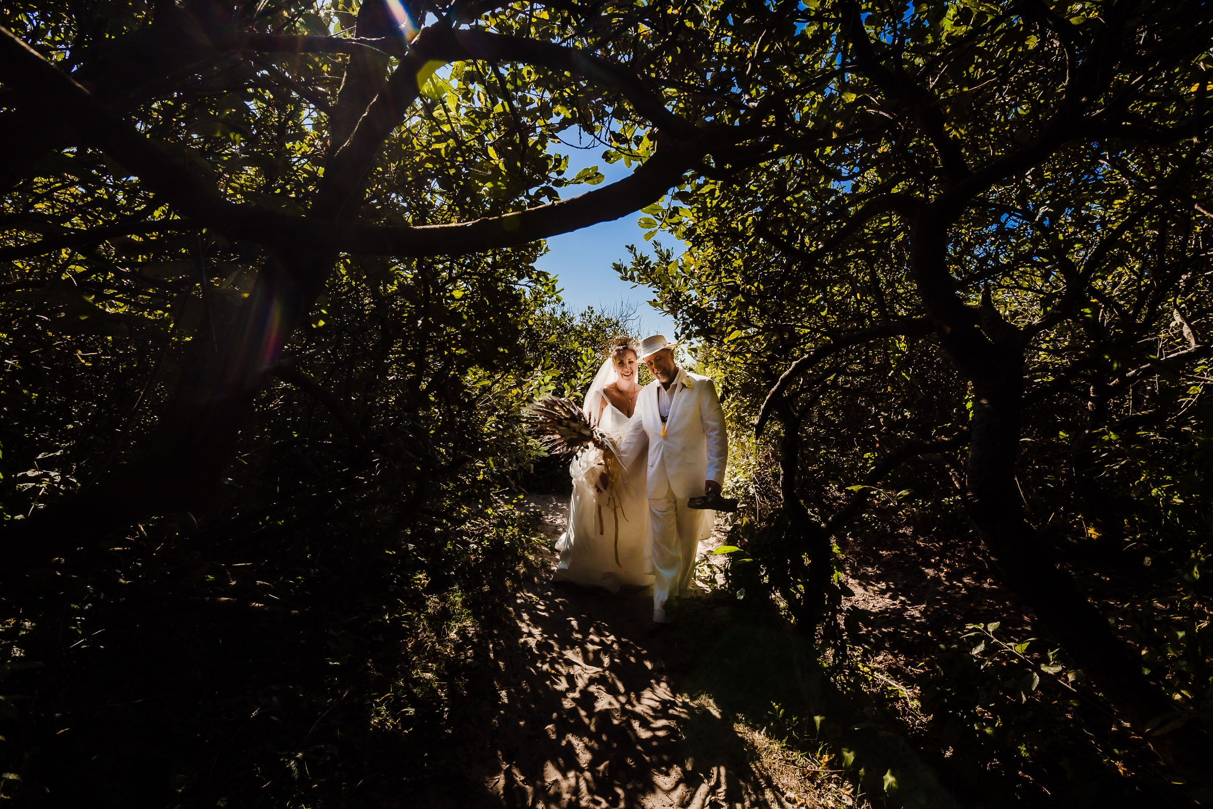 A bride and groom walking through trees during their Cannon Beach wedding near Haystack Rock in Oregon
