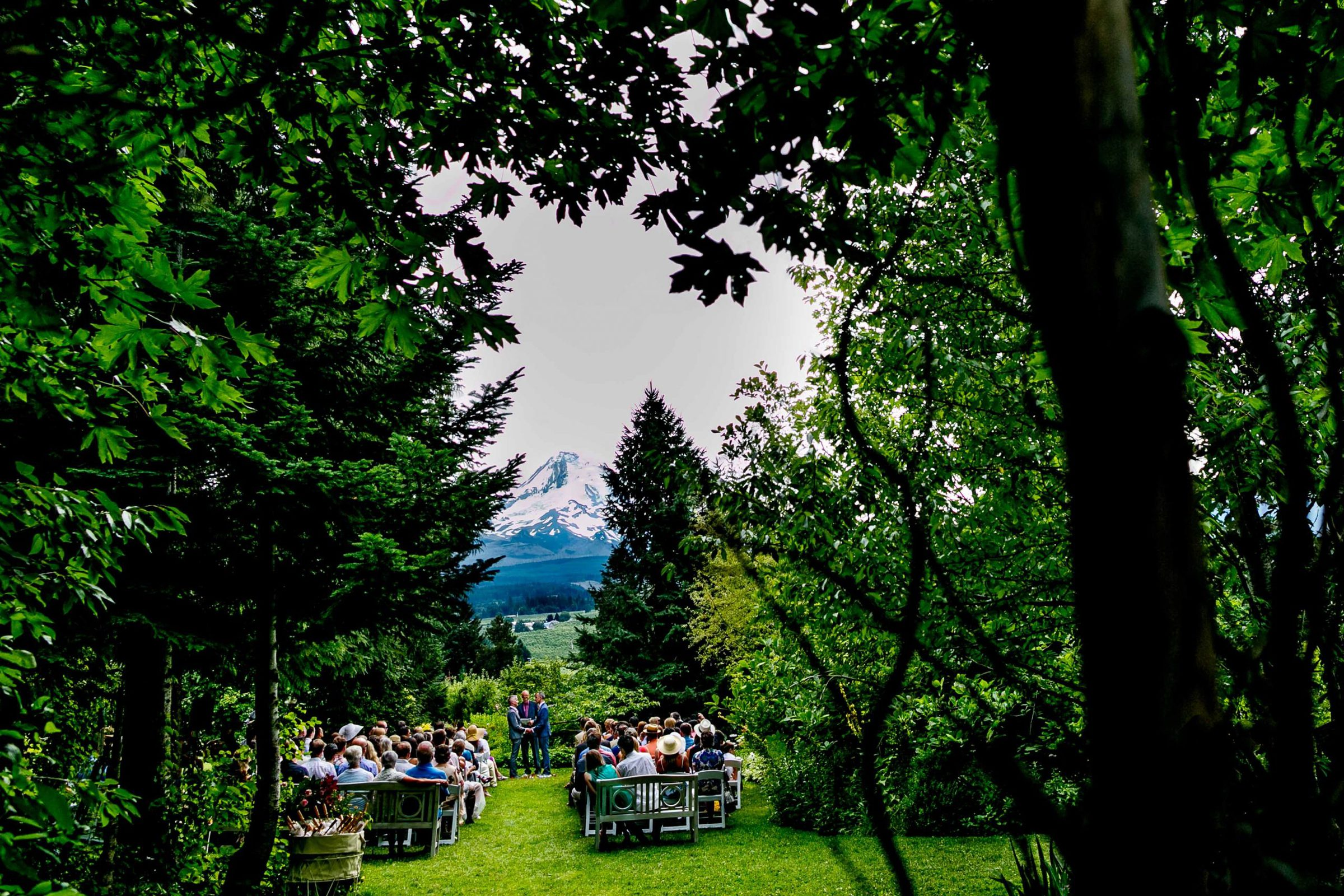 A wide angle view of two grooms exchanging vows during their Mt Hood Organic Farms Wedding ceremony just outside Hood River, Oregon