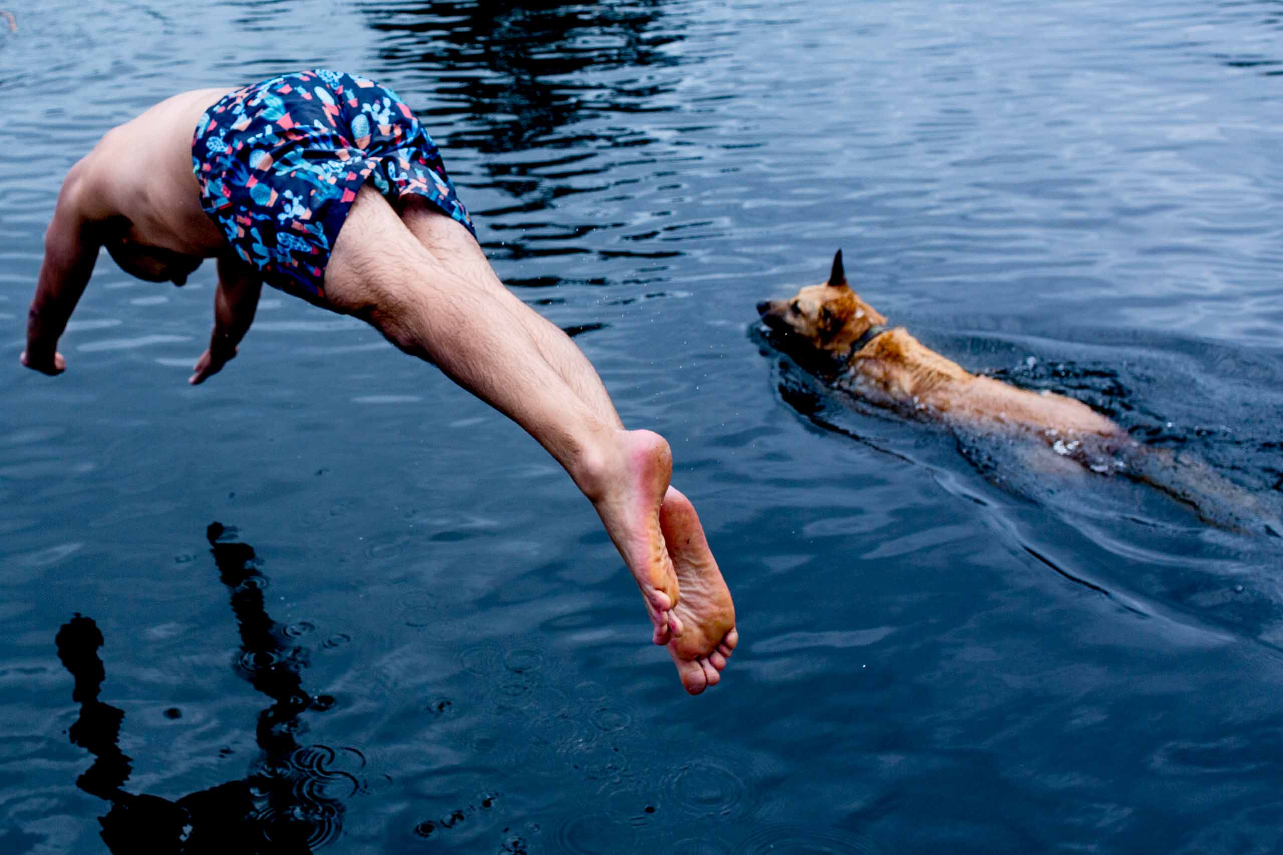 Groom jumping into water with his dog before his Seattle elopement