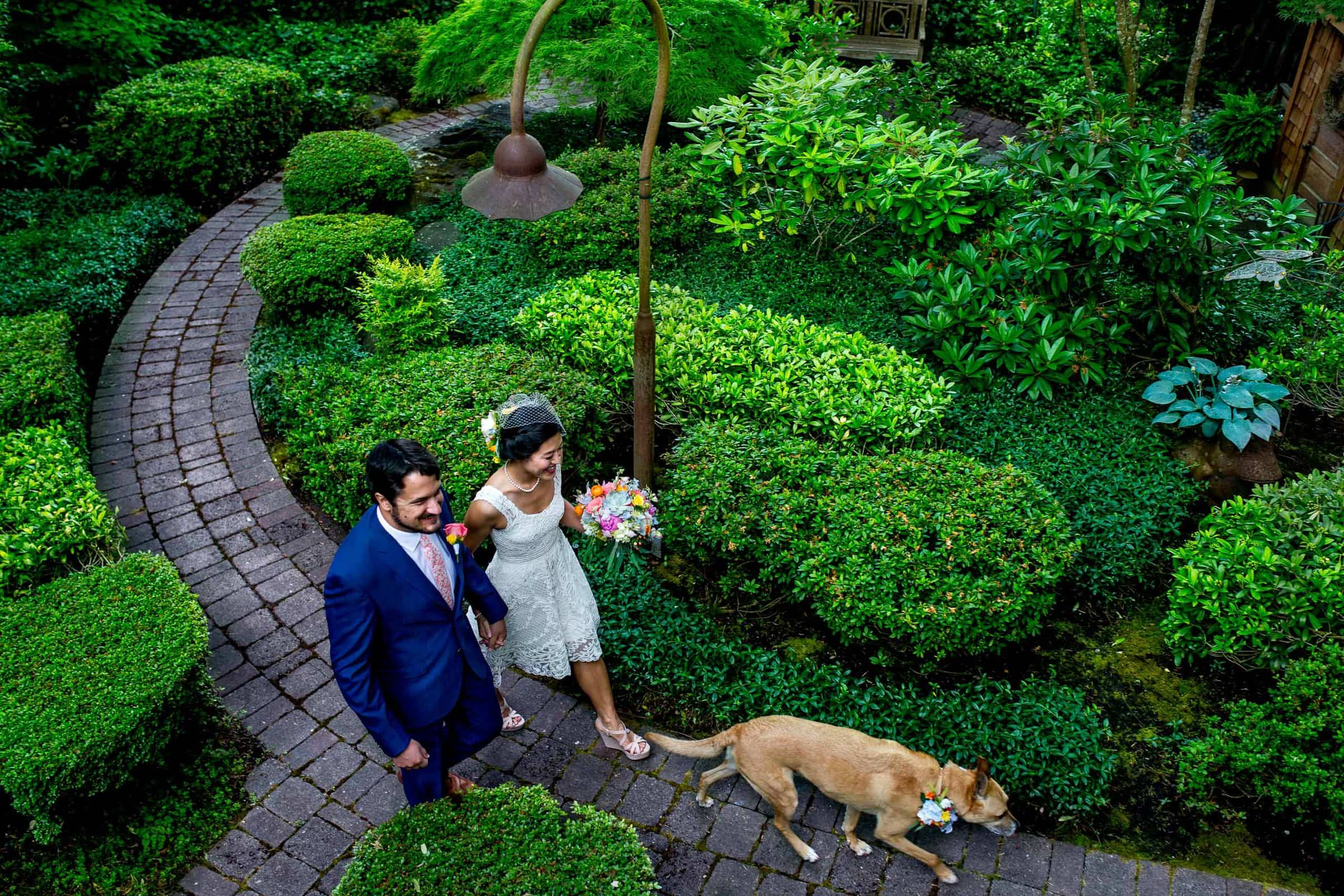 Bride and Groom walking with their dog during a private Seattle elopement ceremony