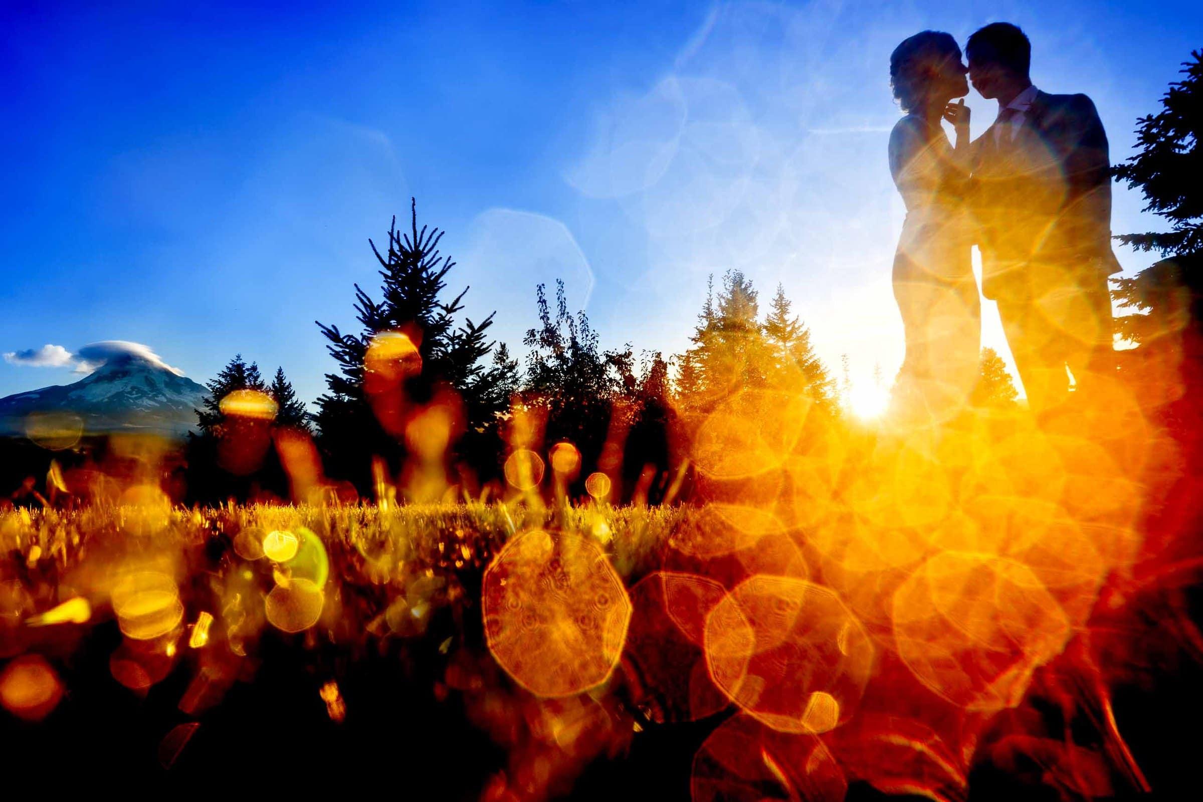 Bride and groom portrait through sun flair during a Mt Hood Organic Farms wedding reception near Hood River Oregon