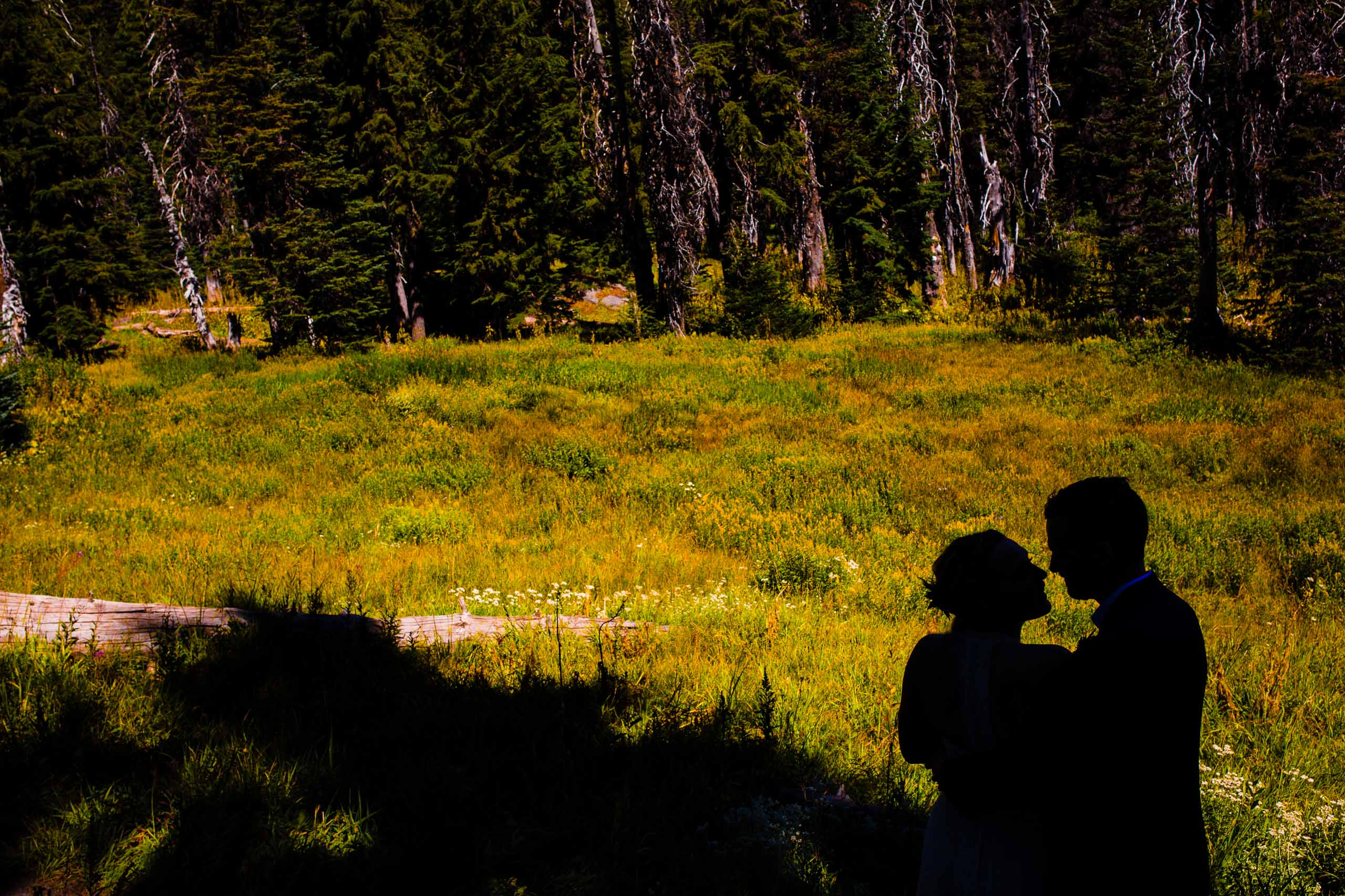 Bride and groom silhouette in deep nature at their Mt Hood Meadows wedding at Umbrella Falls