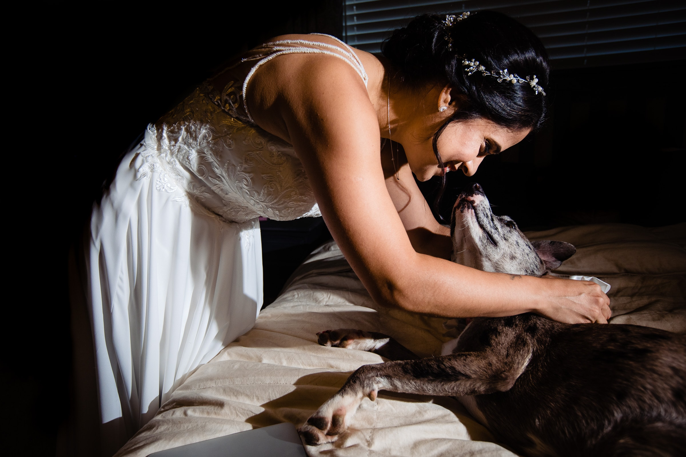 Bride with a dog before her Portland Wedding elopement