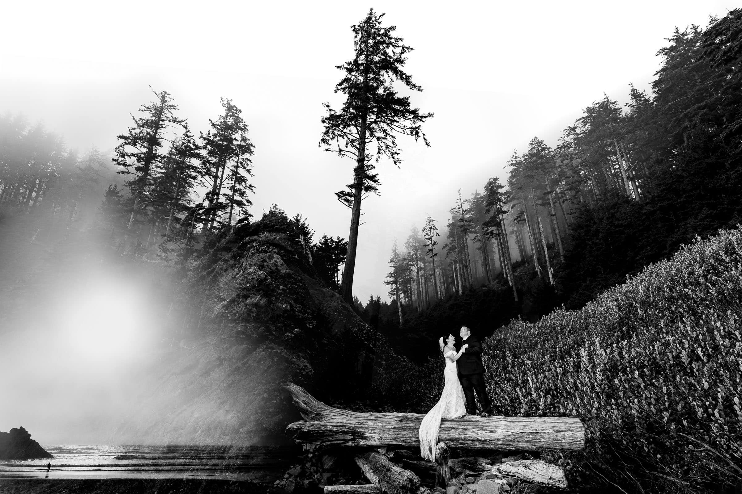 Cannon beach elopement with bride and groom portrait on a large log with fog and trees behind them.