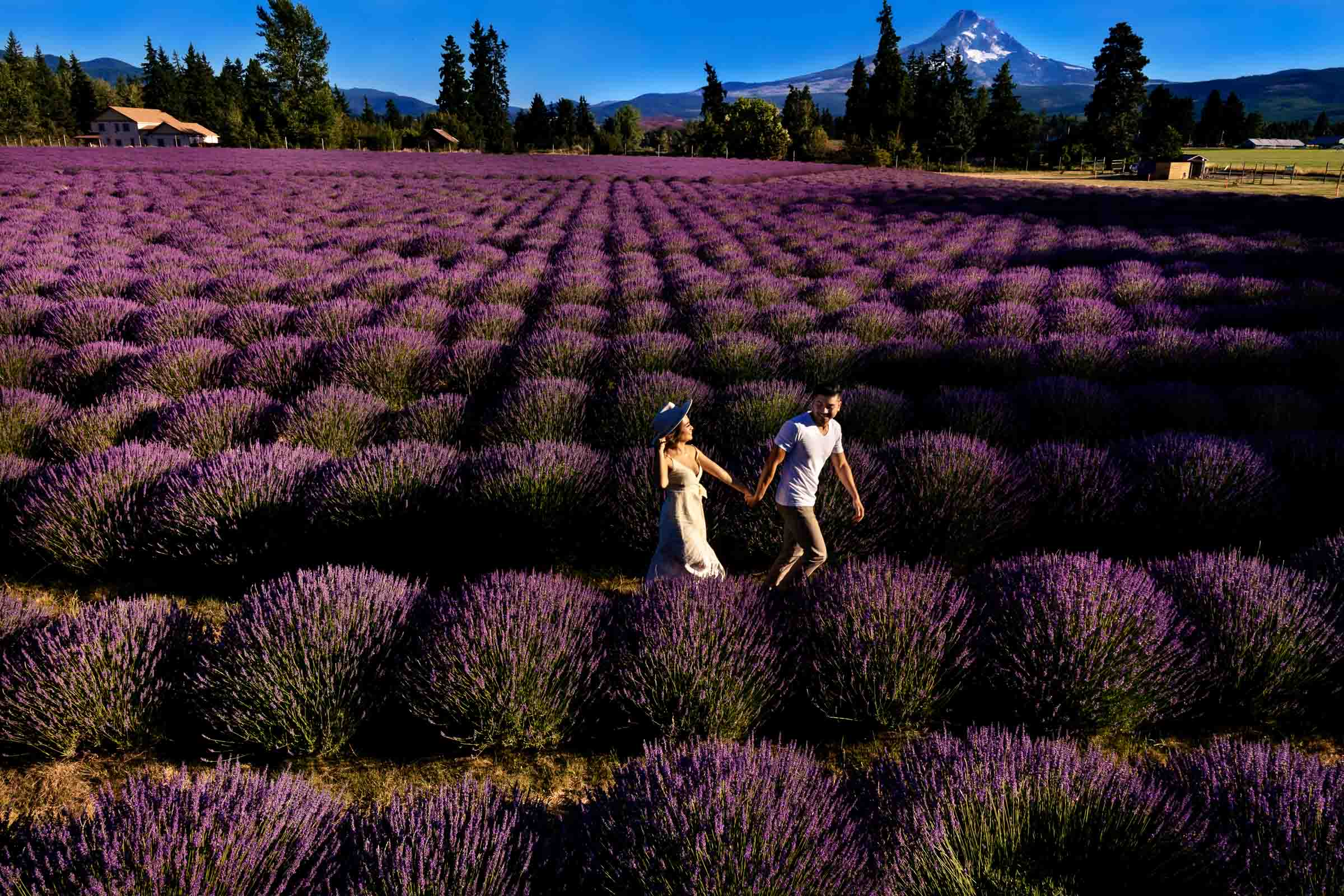 A beautiful couple walking together with Mt Hood in the distance for their Lavender Valley Engagement Photos