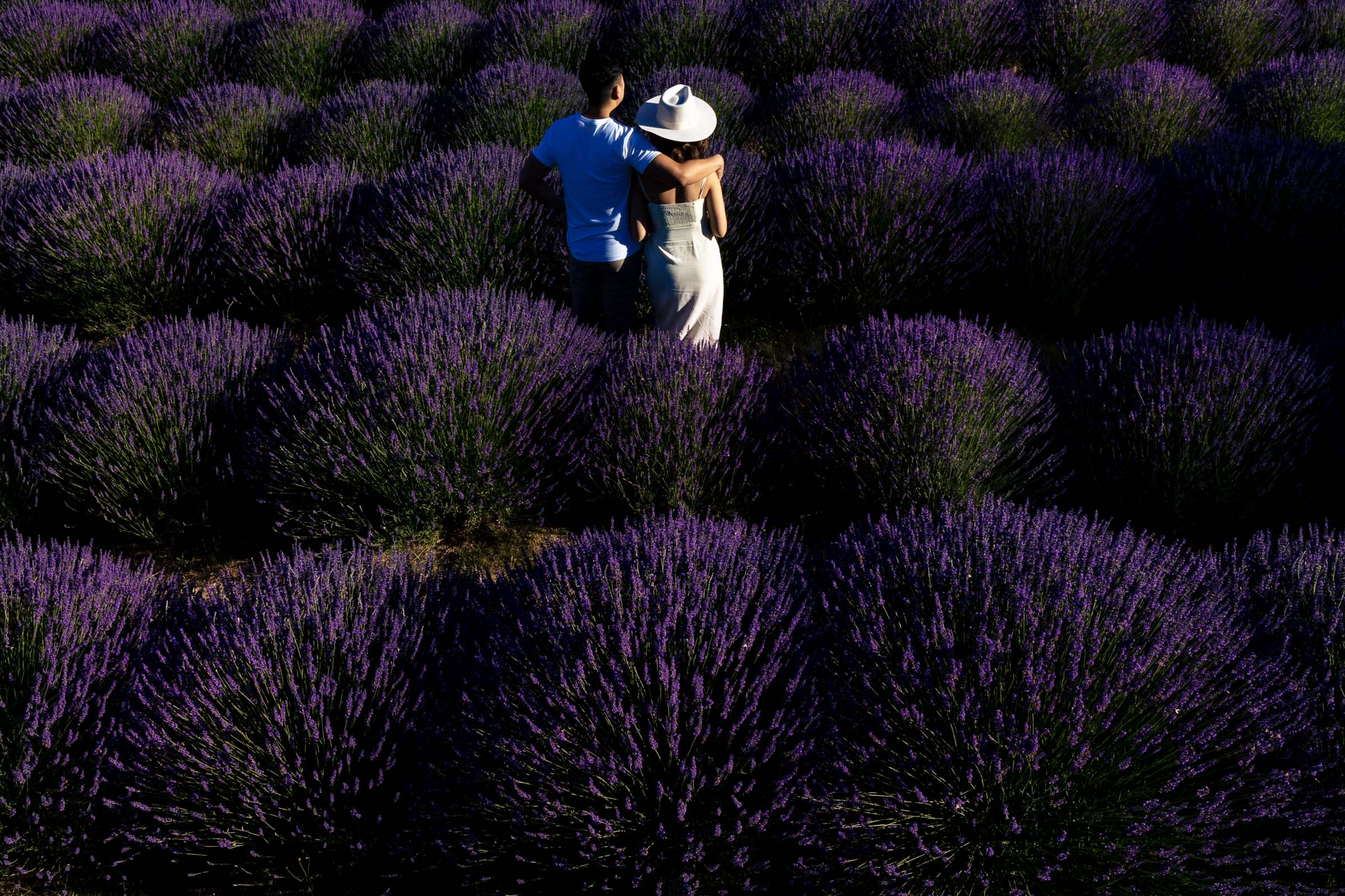 Gorgeous couple standing together in a field during their Lavender Valley Engagement Photos
