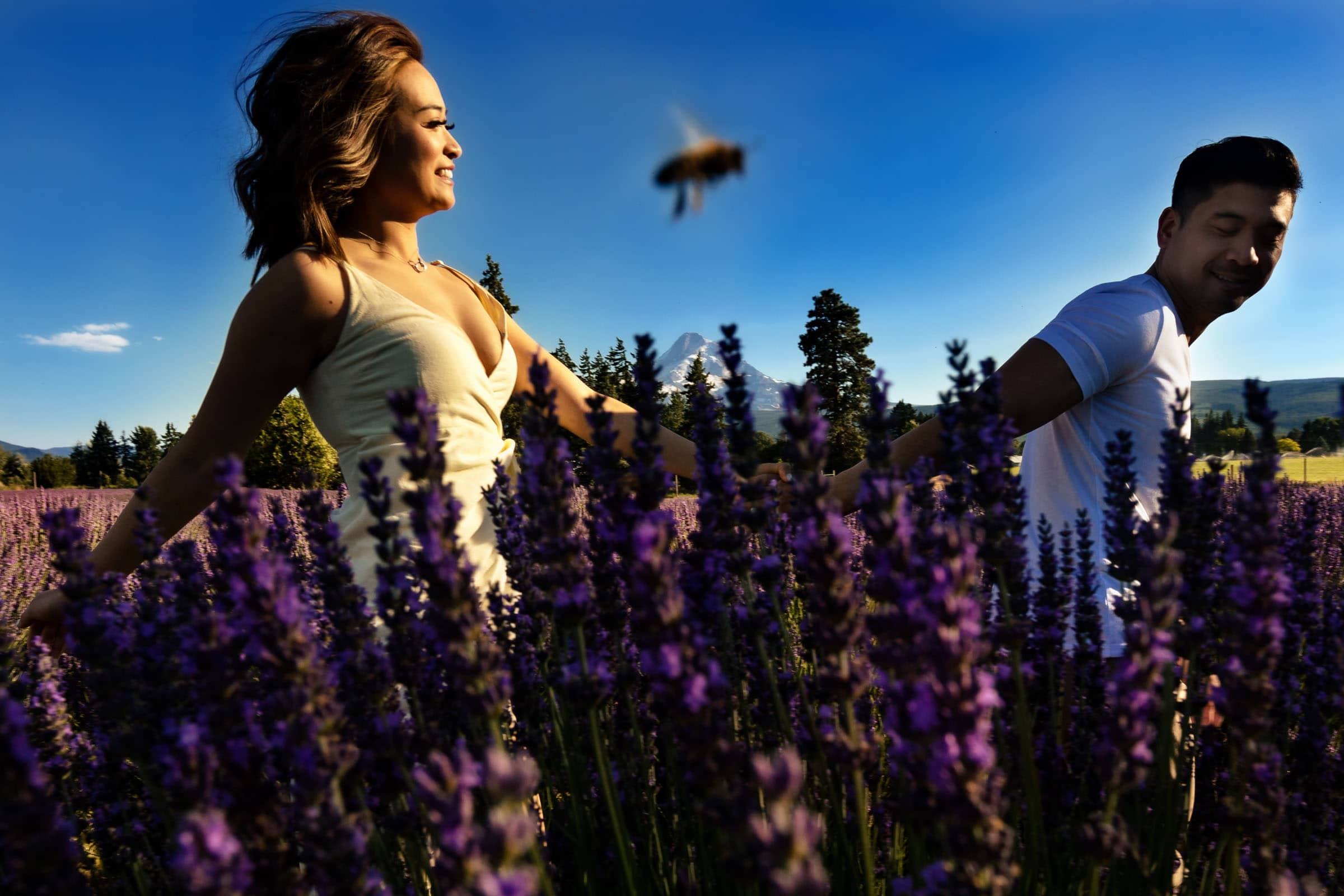 A couple holding hands walking together with a bee flying between them during their Lavender Valley Engagement Photos